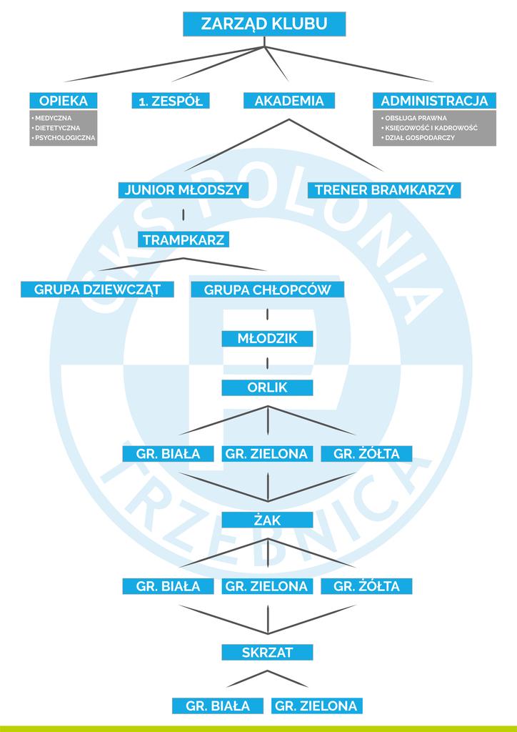 struktura organizacyjna-01.jpeg